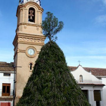 Fontanars dels Alforins encén la foguera en honor a Sant Antoni aquest dissabte