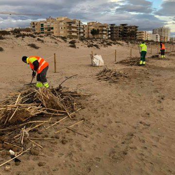Daimús comença la neteja de la seua platja