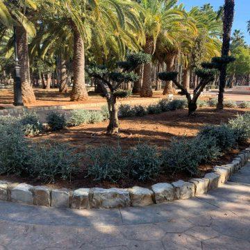 Alzira millora el parc de l'Alquenència amb noves espècies