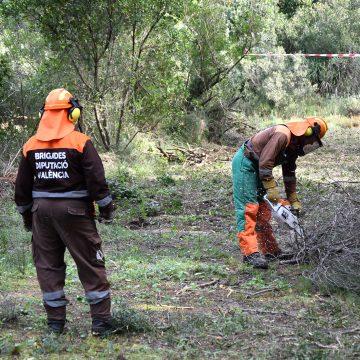 Alzira posa en marxa el voluntariat ambiental en prevenció d'incendis forestals