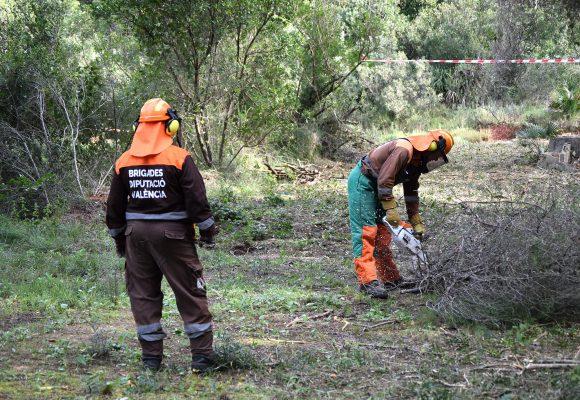 Les Brigades Forestals realitzen tasques de prevenció d'incendis a Alzira