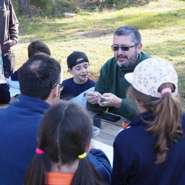 400 escolars de Carcaixent participen de les activitats del Dia de l'Arbre