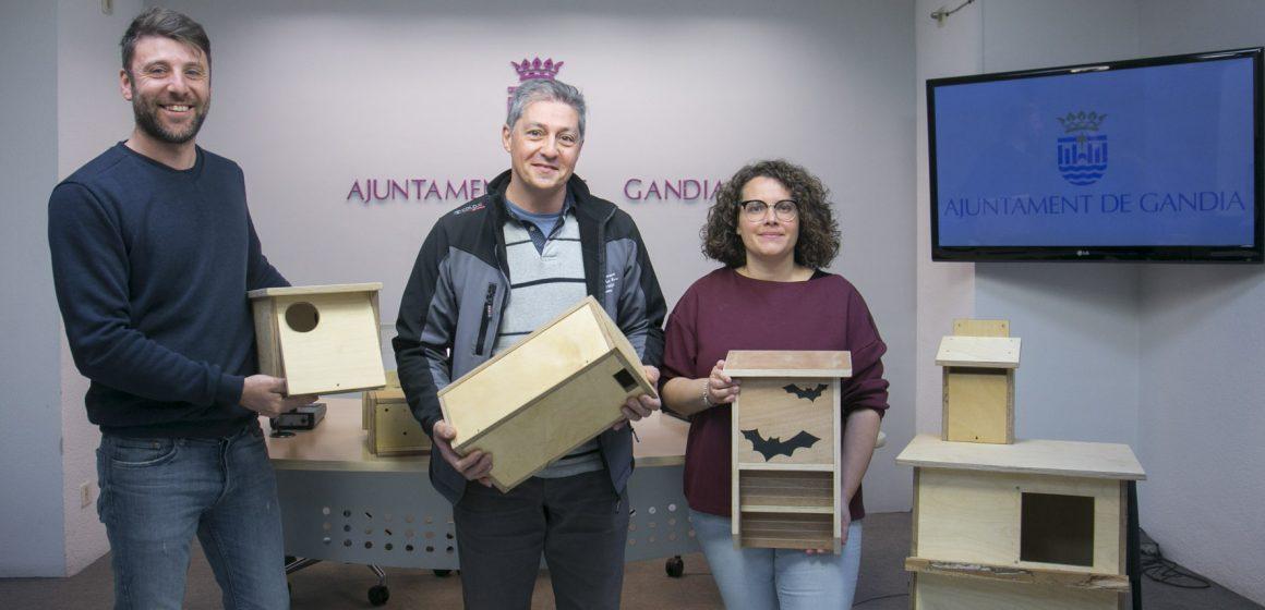 Alumnes del Tirant lo Blanc de Gandia fabriquen caixes niu per a ocells i rates penades