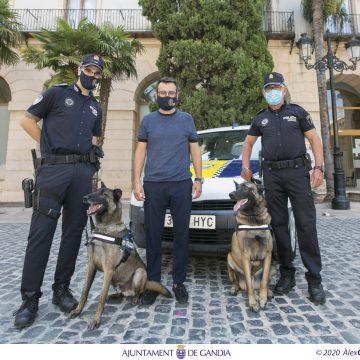 Gandia incorpora una Unitat Canina a la Policia Local
