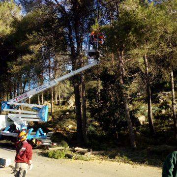 L'alumnat dels tallers d'ocupació de Simat netegen la zona de Les Foies