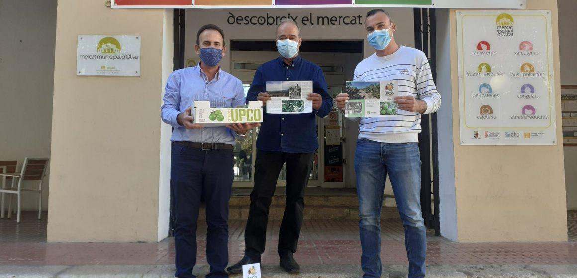 L'Ajuntament d'Oliva col·labora amb la UPCO, per a la promoció dels cítrics locals