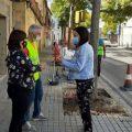 Ontinyent millora els escocells i voreres del carrer Tirador dins del pla «Tornem Junts»