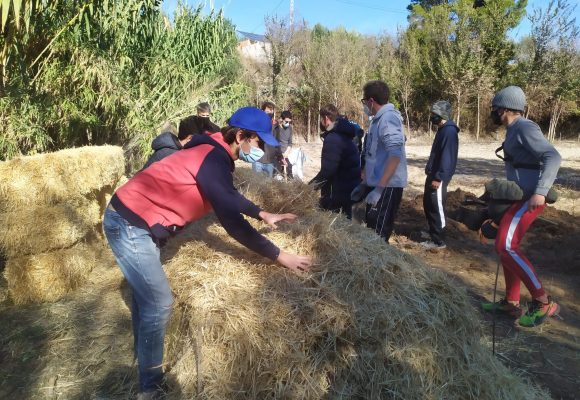 L'Ajuntament d'Albaida i l'IES Josep Segrelles organitzen un taller de compostatge