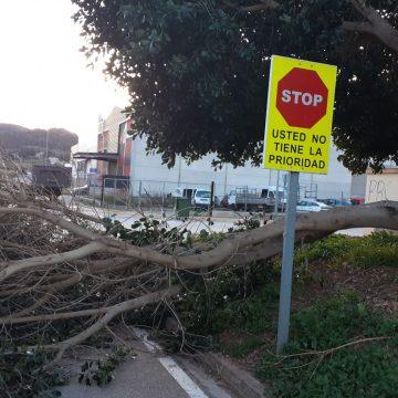 El fort vent provoca importants desperfectes en Villalonga