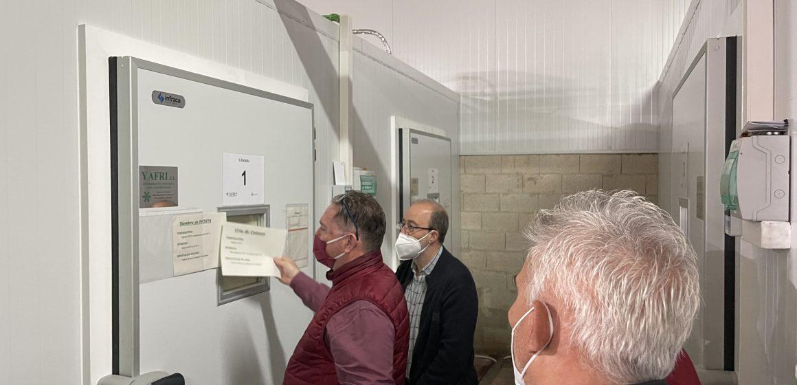 Alzira ja té el seu nou insectari Municipal per a la lluita contra el cotonet