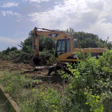 L'Ajuntament de Carcaixent sancionarà  a les persones propietàries dels camps en estat d'abandonament